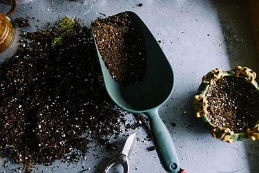 Gartenartikel online kaufen