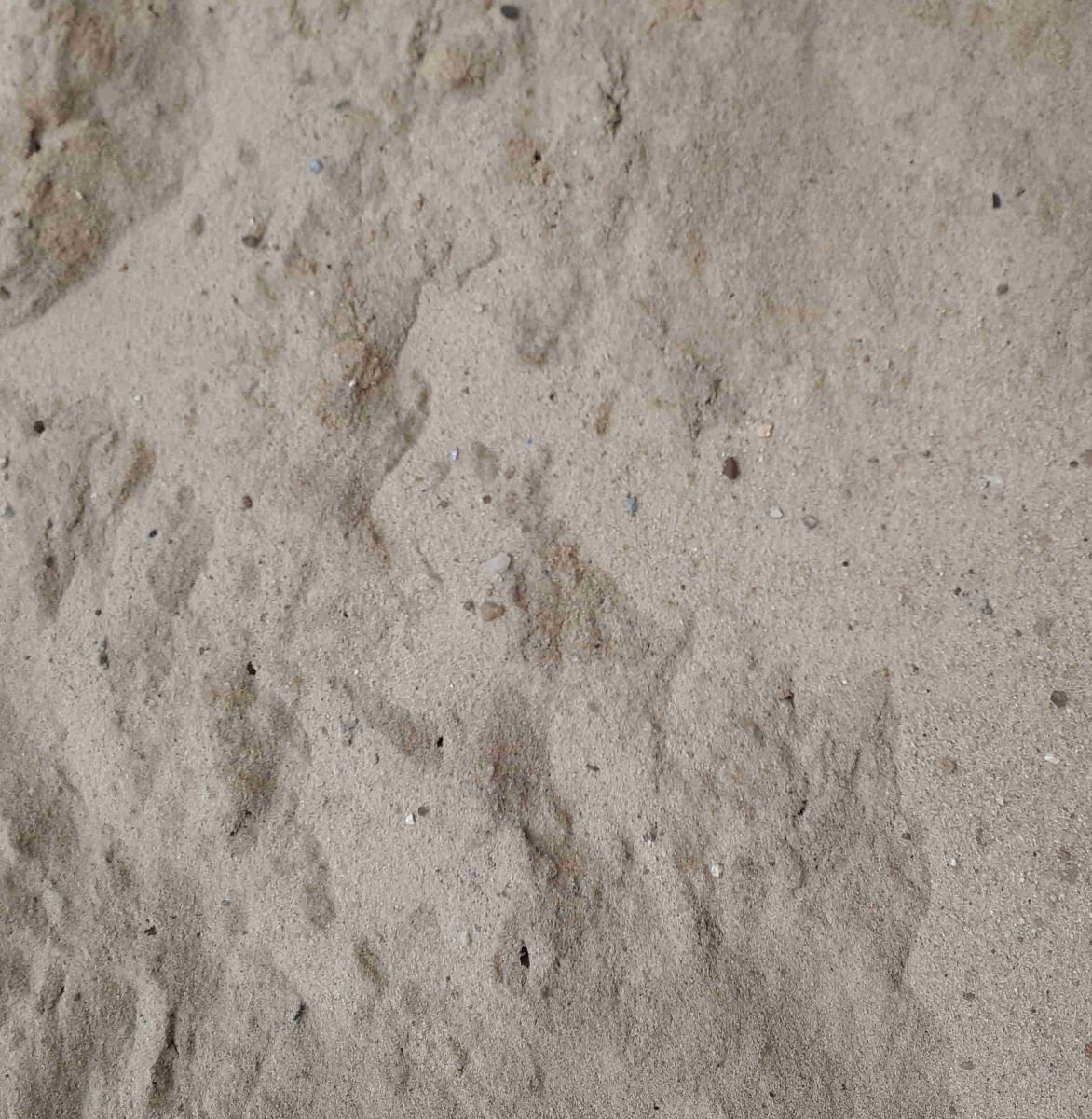 Lotsand